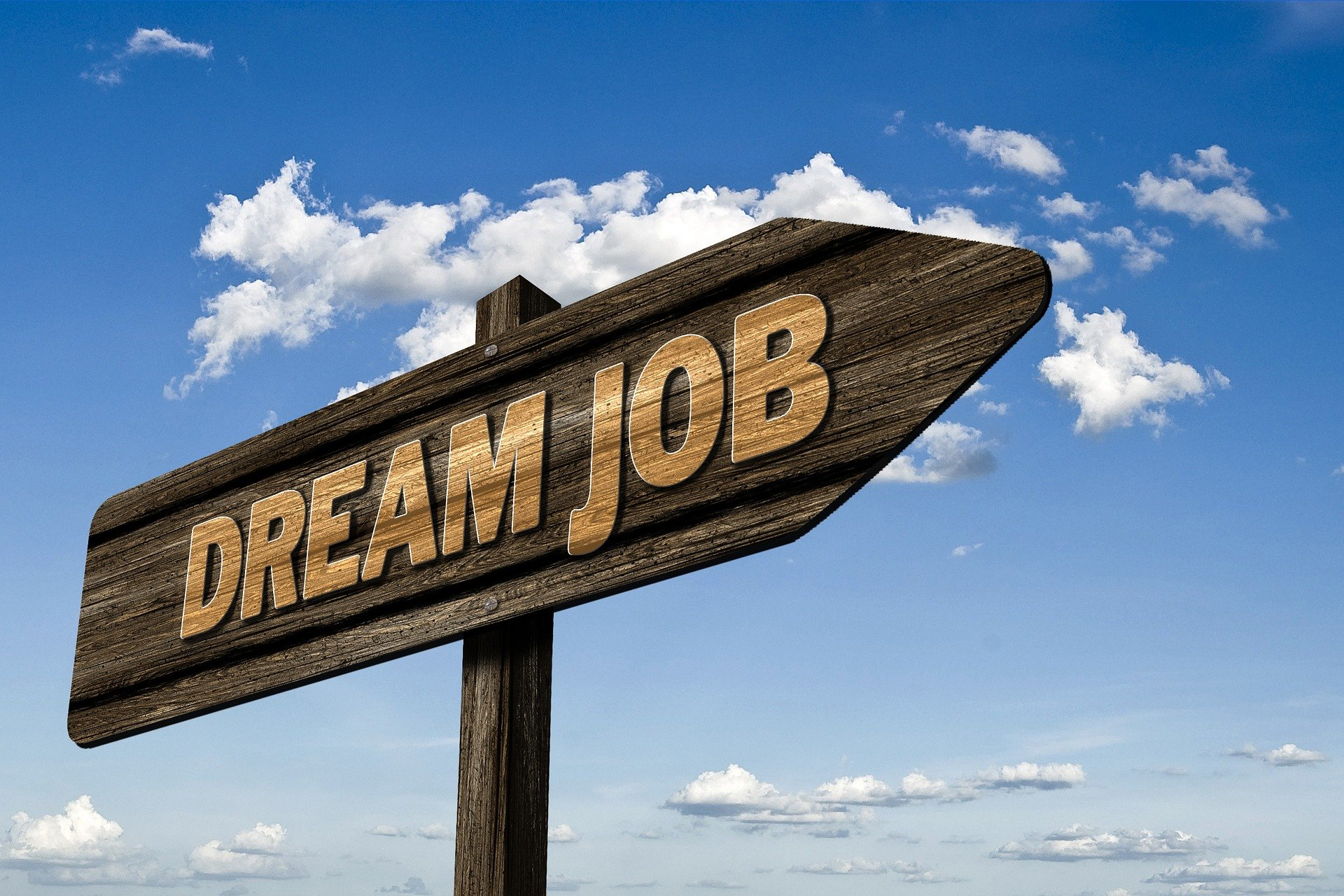 Job Search Strategies in Singapore